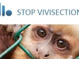 STOP VIVISECTION: attivati anchetu!